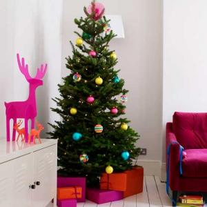 Christmas Trees - Fresh, Real & Quality Guaranteed