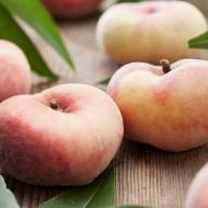 Prunus persica Saturne - Flat Peach