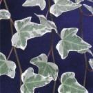 Hedera helix Glacier - Variegated Common Ivy