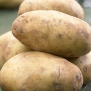 Swift - 1st Early Seed Potatoes - Pack of 10